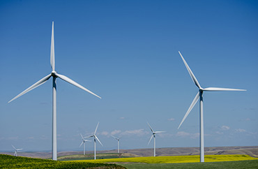 Hopkins Ridge Vestas Wind Turbines